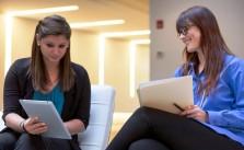 Tips Mencari Lowongan Kerja BUMN PTPN VIII